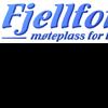 FF2 Logo mini