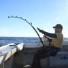 fiskekongen